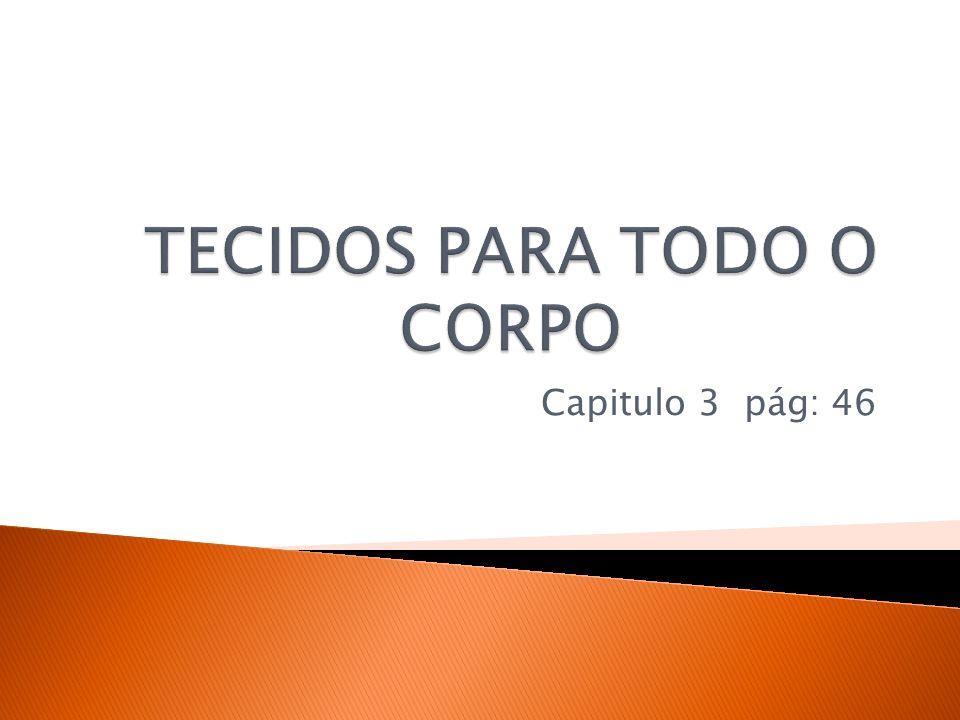 http://lilianeciencias.blogspot.com.br/search /label/8%20%C2%BA%20ano