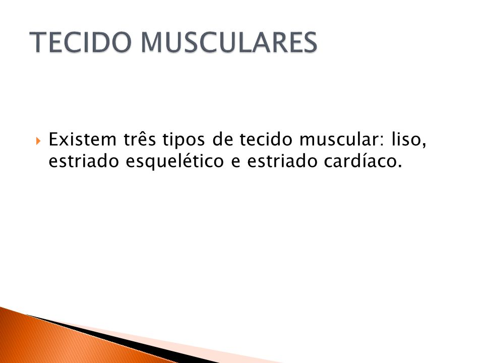 Existem três tipos de tecido muscular: liso, estriado esquelético e estriado cardíaco.
