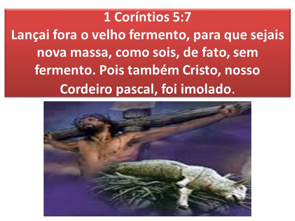 1 Coríntios 5:7 Lançai fora o velho fermento, para que sejais nova massa, como sois, de fato, sem fermento.