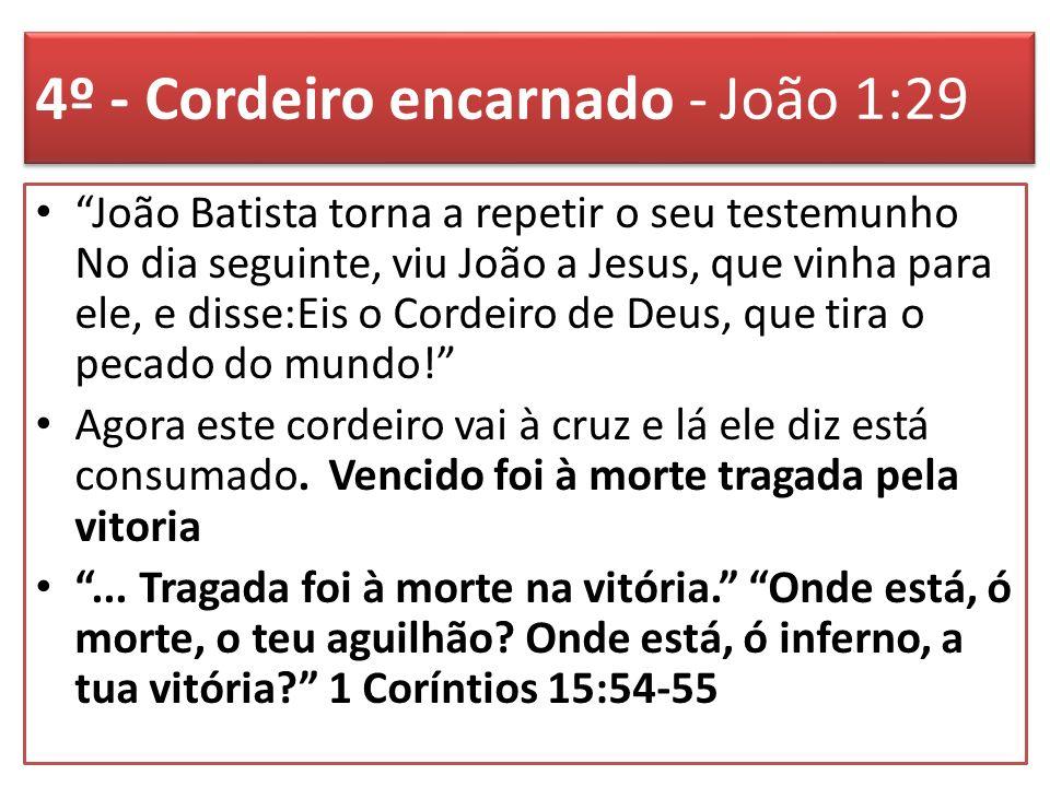 4º - Cordeiro encarnado - João 1:29 João Batista torna a repetir o seu testemunho No dia seguinte, viu João a Jesus, que vinha para ele, e disse:Eis o Cordeiro de Deus, que tira o pecado do mundo.