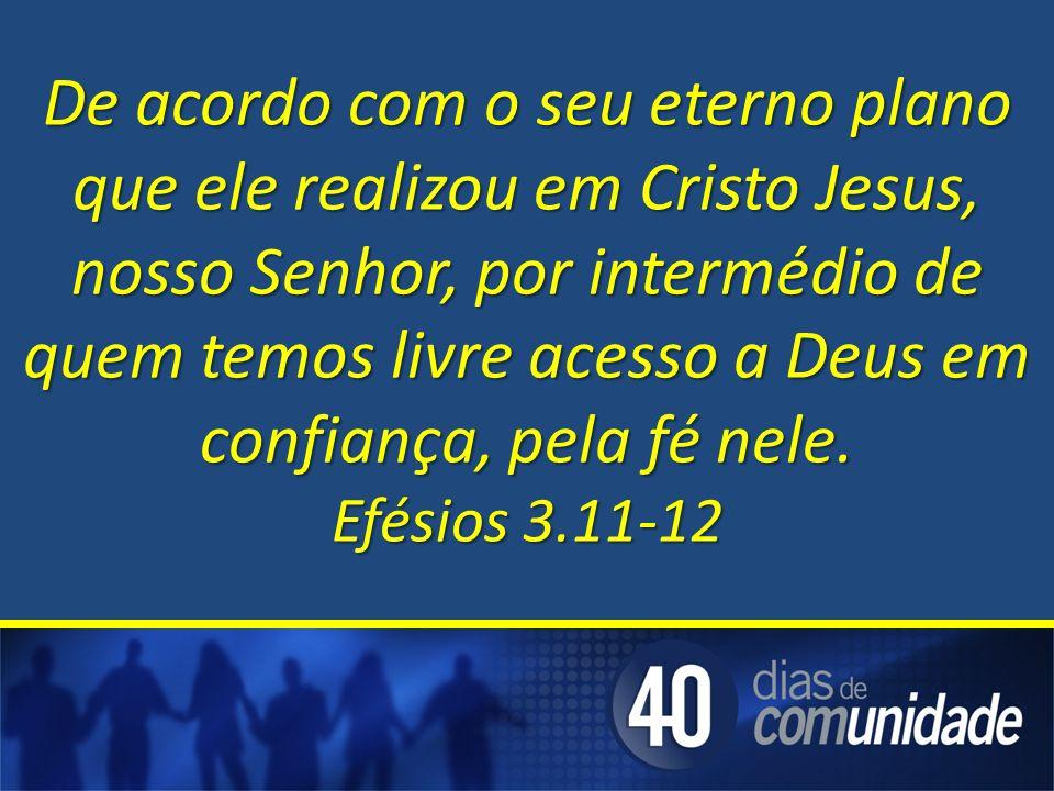 De acordo com o seu eterno plano que ele realizou em Cristo Jesus, nosso Senhor, por intermédio de quem temos livre acesso a Deus em confiança, pela fé nele.