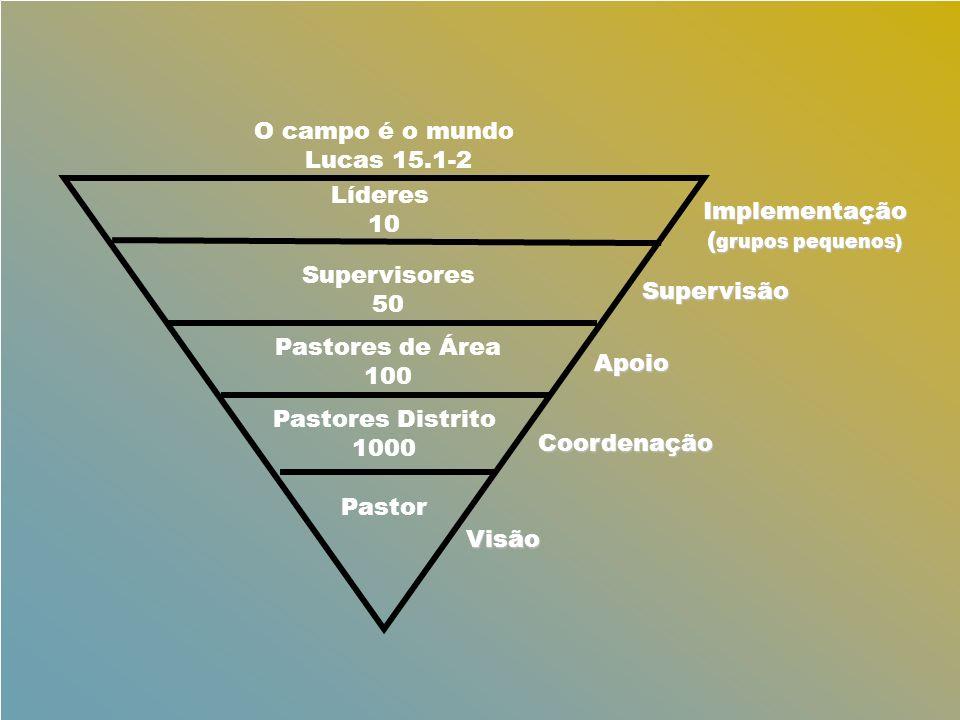 Líderes 10 Supervisores 50 Pastores de Área 100 Pastores Distrito 1000 Pastor O campo é o mundo Lucas 15.1-2 Implementação ( grupos pequenos) Supervis
