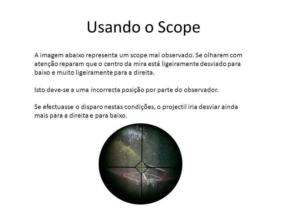Usando o Scope A imagem abaixo representa um scope mal observado. Se olharem com atenção reparam que o centro da mira está ligeiramente desviado para