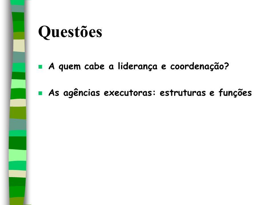 Questões n A quem cabe a liderança e coordenação? n As agências executoras: estruturas e funções