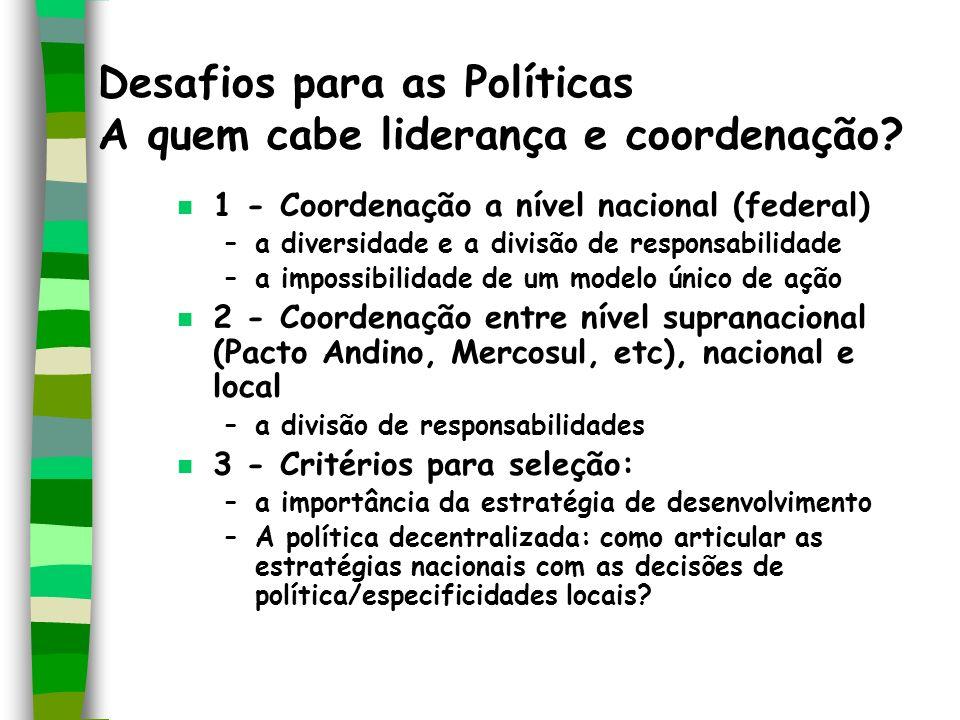 Desafios para as Políticas A quem cabe liderança e coordenação? n 1 - Coordenação a nível nacional (federal) –a diversidade e a divisão de responsabil