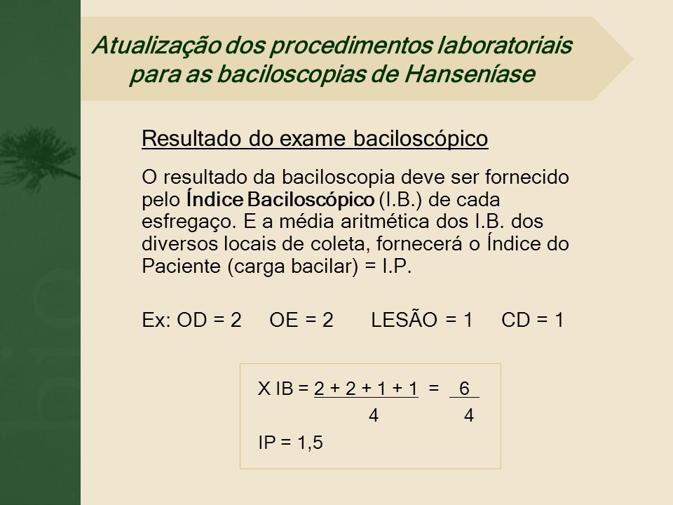 Resultado do exame baciloscópico O resultado da baciloscopia deve ser fornecido pelo Índice Baciloscópico (I.B.) de cada esfregaço. E a média aritméti