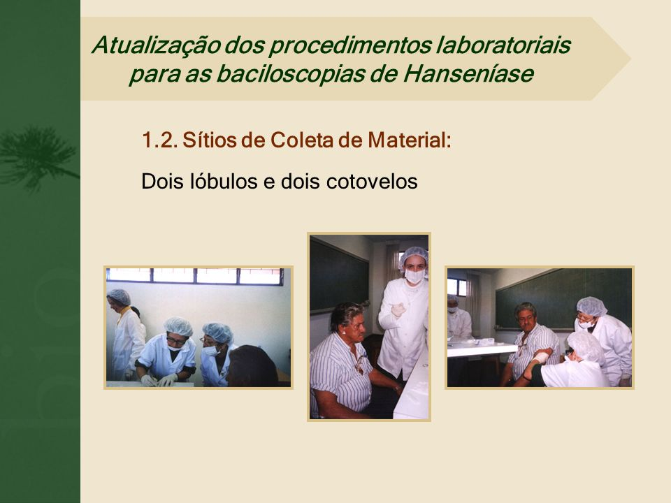 1.2. Sítios de Coleta de Material: Dois lóbulos e dois cotovelos Atualização dos procedimentos laboratoriais para as baciloscopias de Hanseníase