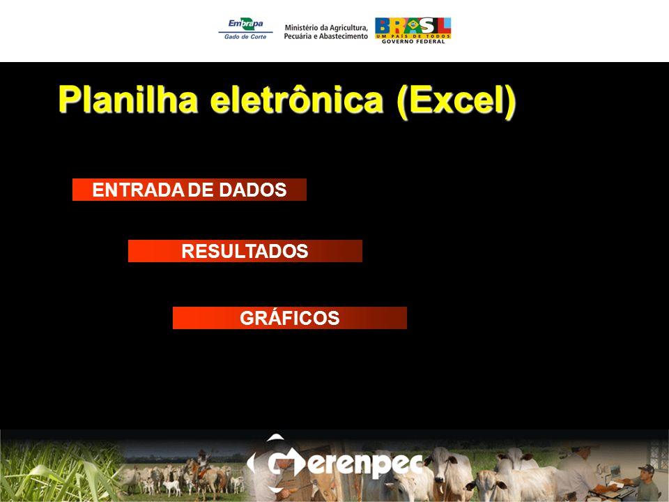Planilha eletrônica (Excel) ENTRADA DE DADOS RESULTADOS GRÁFICOS