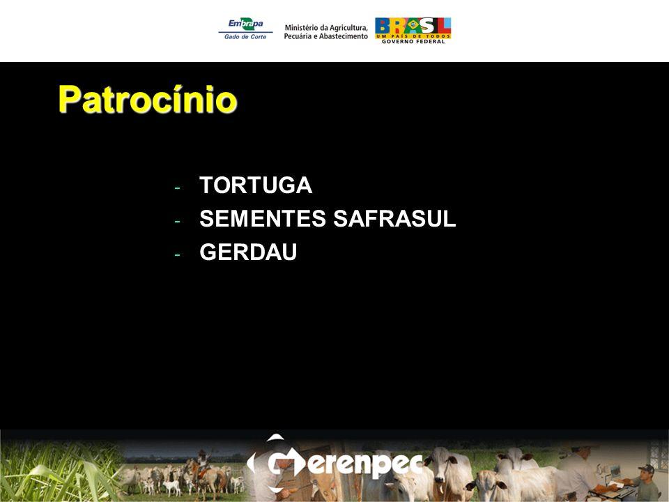 Patrocínio - TORTUGA - SEMENTES SAFRASUL - GERDAU