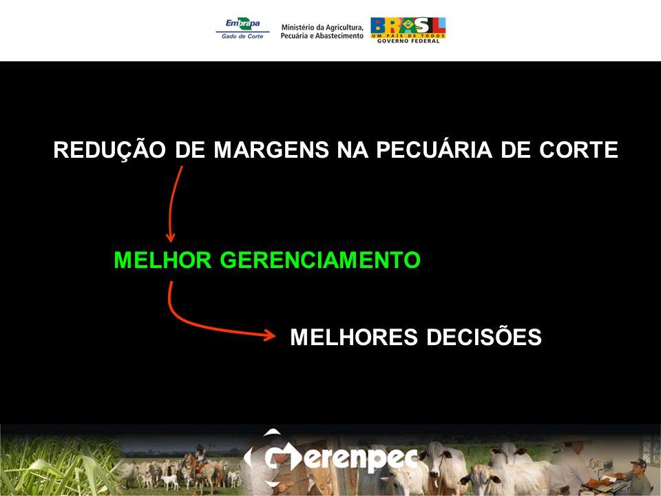 REDUÇÃO DE MARGENS NA PECUÁRIA DE CORTE MELHOR GERENCIAMENTO MELHORES DECISÕES