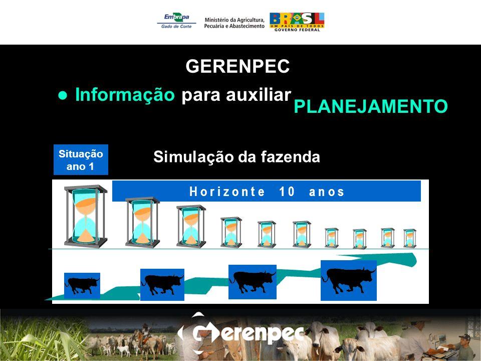 Informação para auxiliar H o r i z o n t e 1 0 a n o s Situação ano 1 Simulação da fazenda GERENPEC PLANEJAMENTO