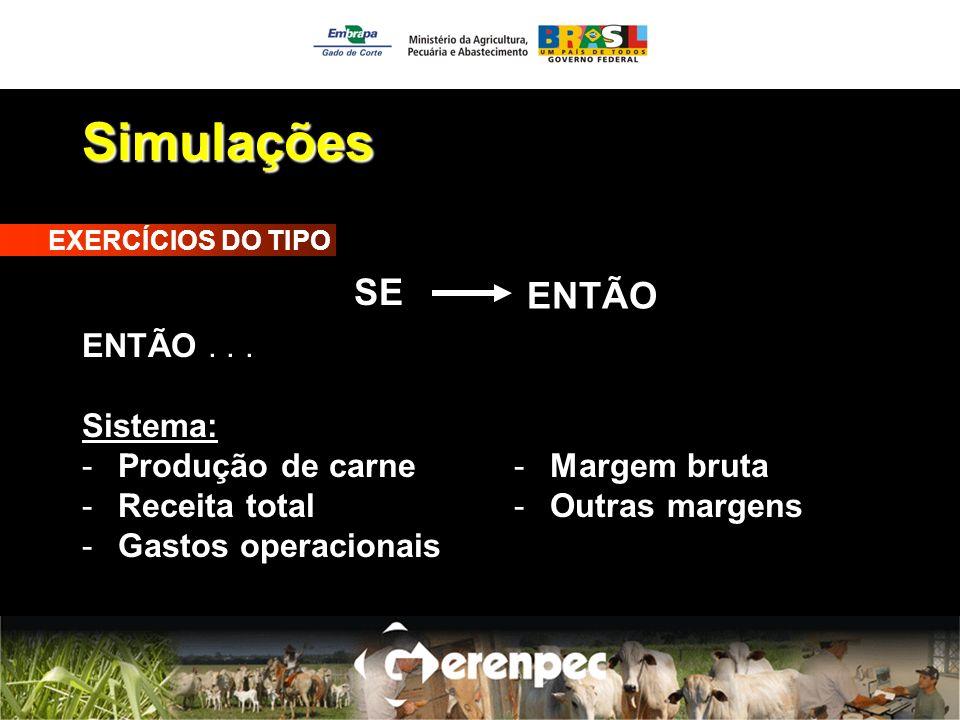 Simulações EXERCÍCIOS DO TIPO ENTÃO... Sistema: -Produção de carne -Receita total -Gastos operacionais SE ENTÃO -Margem bruta -Outras margens