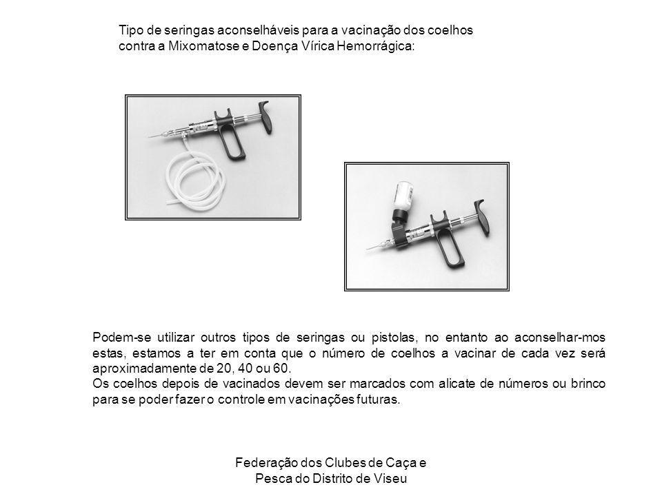 Federação dos Clubes de Caça e Pesca do Distrito de Viseu Tipo de seringas aconselháveis para a vacinação dos coelhos contra a Mixomatose e Doença Vír
