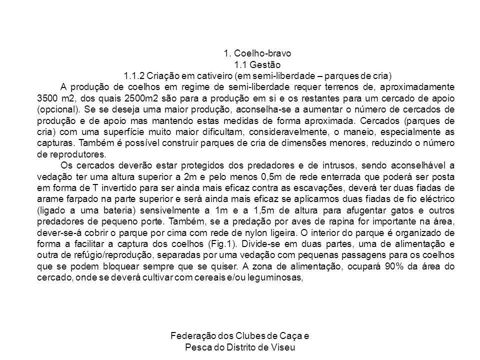 Federação dos Clubes de Caça e Pesca do Distrito de Viseu 1. Coelho-bravo 1.1 Gestão 1.1.2 Criação em cativeiro (em semi-liberdade – parques de cria)