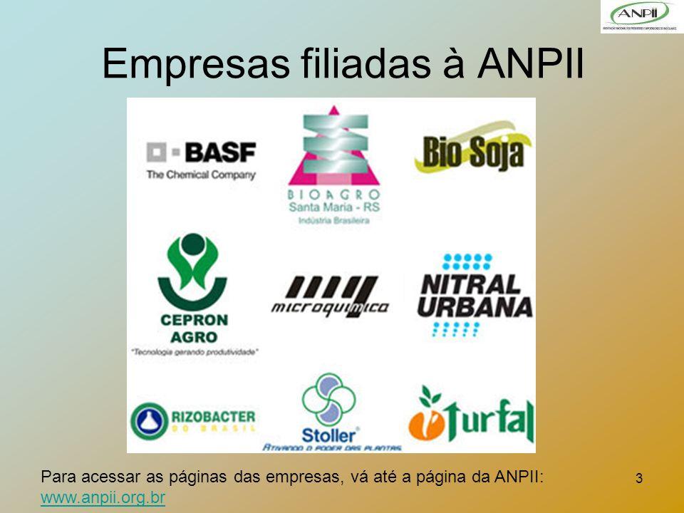 3 Empresas filiadas à ANPII Para acessar as páginas das empresas, vá até a página da ANPII: www.anpii.org.br