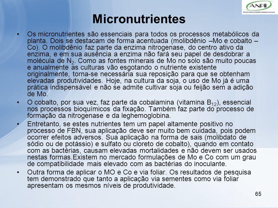 65 Micronutrientes Os micronutrientes são essenciais para todos os processos metabólicos da planta. Dois se destacam de forma acentuada (molibdênio –M
