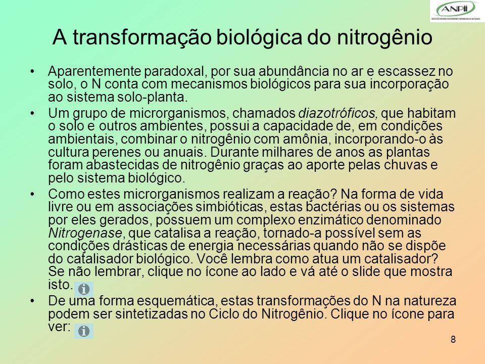 8 A transformação biológica do nitrogênio Aparentemente paradoxal, por sua abundância no ar e escassez no solo, o N conta com mecanismos biológicos pa