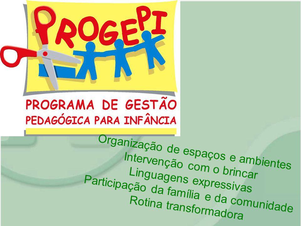 Organização de espaços e ambientes Intervenção com o brincar Linguagens expressivas Participação da família e da comunidade Rotina transformadora