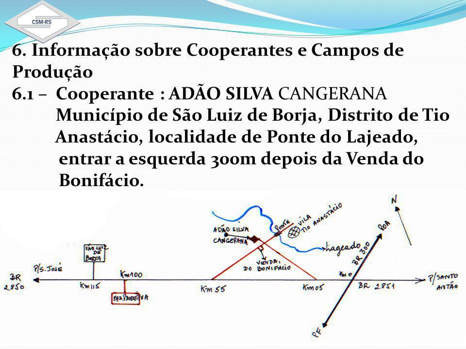 6. Informação sobre Cooperantes e Campos de Produção 6.1 – Cooperante : ADÃO SILVA CANGERANA Município de São Luiz de Borja, Distrito de Tio Anastácio