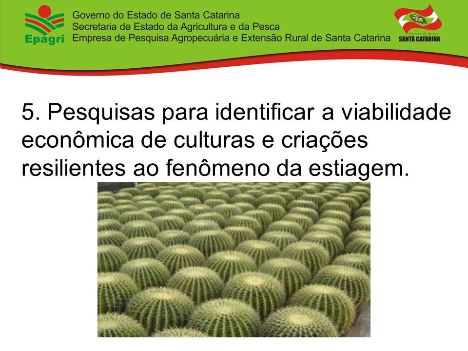 5. Pesquisas para identificar a viabilidade econômica de culturas e criações resilientes ao fenômeno da estiagem.