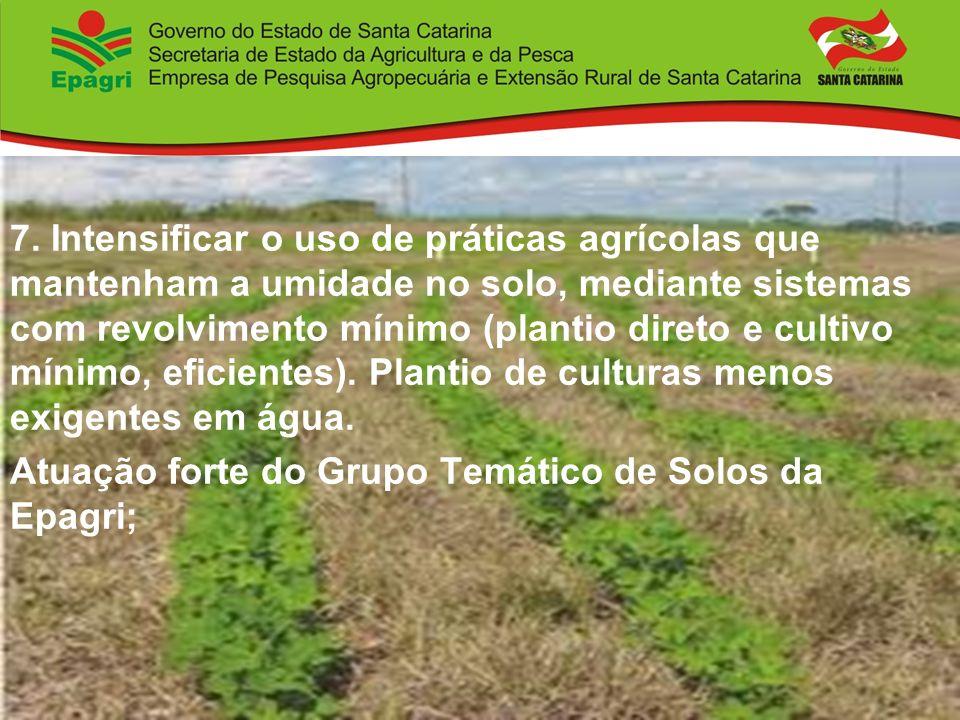 7. Intensificar o uso de práticas agrícolas que mantenham a umidade no solo, mediante sistemas com revolvimento mínimo (plantio direto e cultivo mínim