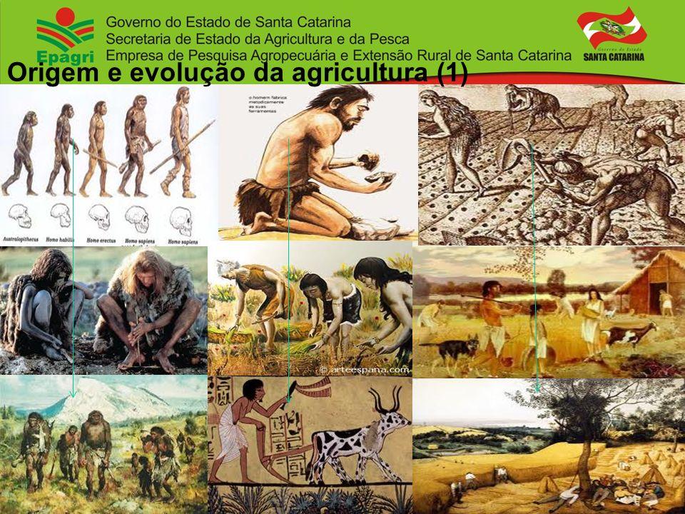 Invenção da agricultura: 10.000 anos AC A agricultura é a maior invenção da humanidade, invenção esta que ainda não está terminada.