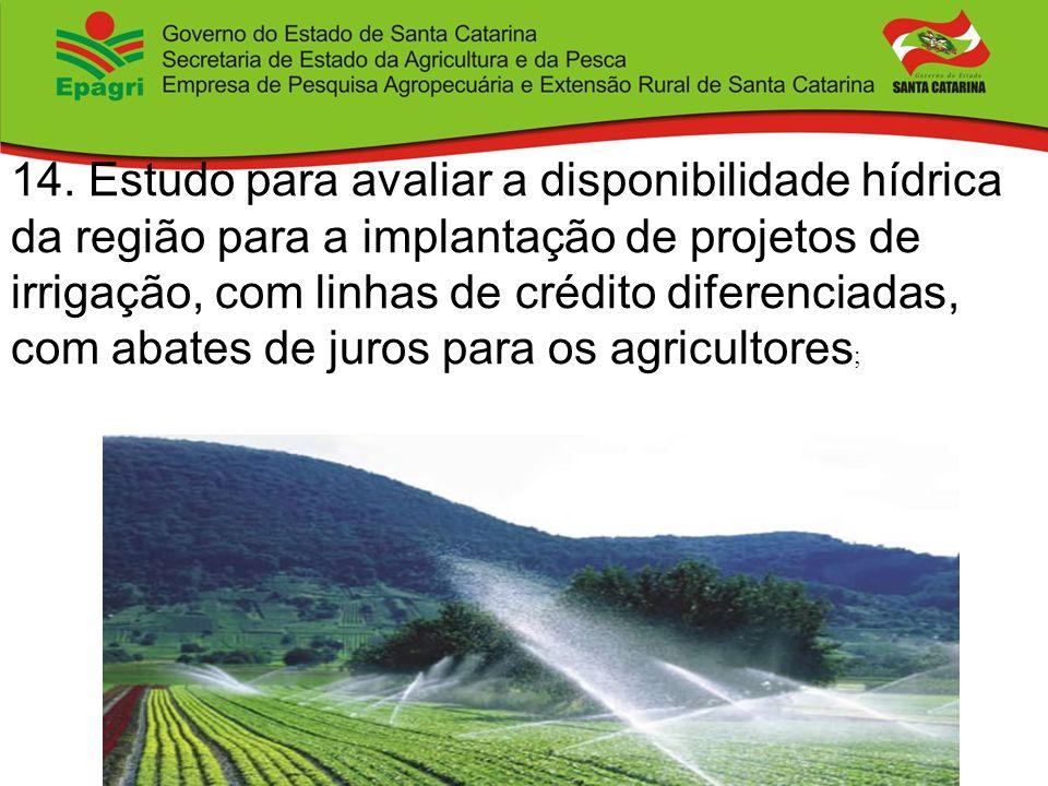 14. Estudo para avaliar a disponibilidade hídrica da região para a implantação de projetos de irrigação, com linhas de crédito diferenciadas, com abat