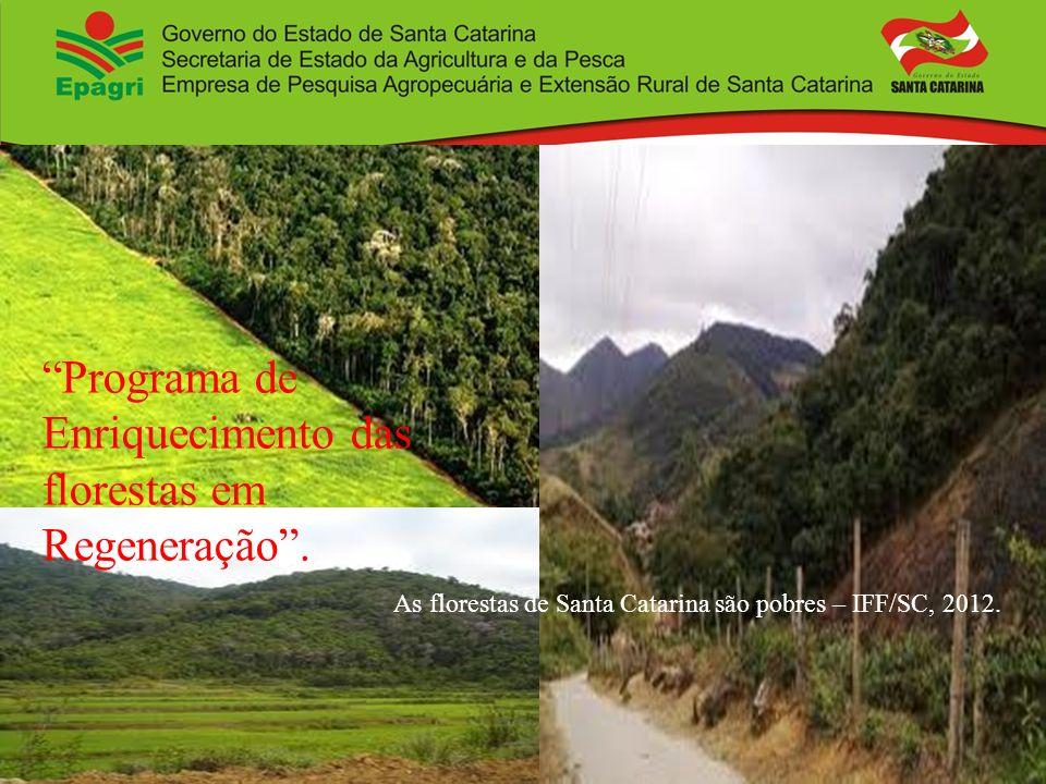Programa de Enriquecimento das florestas em Regeneração. As florestas de Santa Catarina são pobres – IFF/SC, 2012.