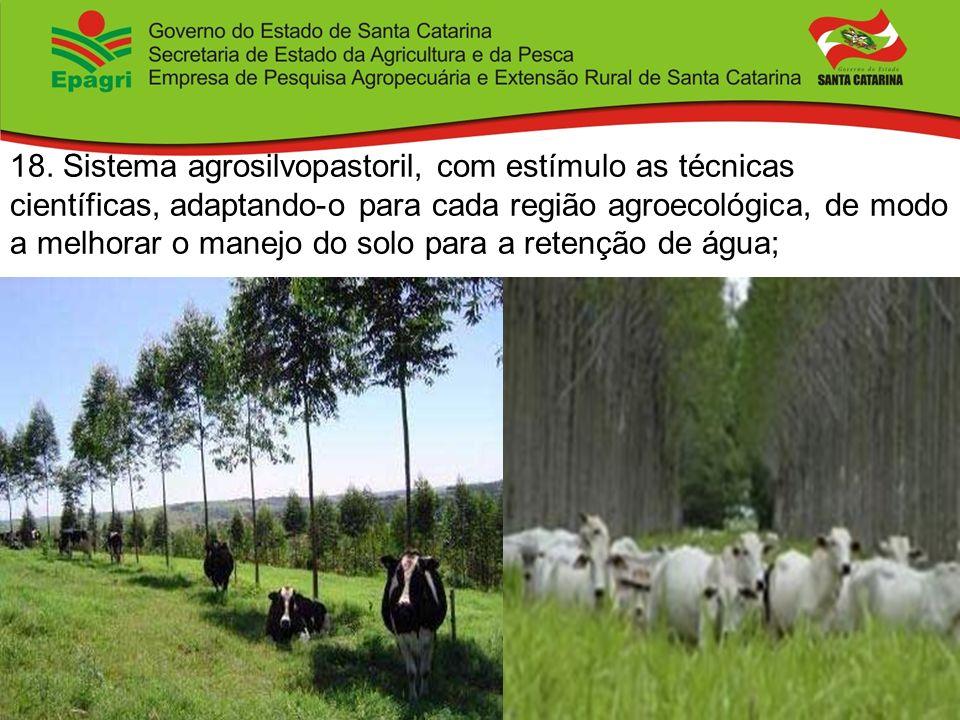18. Sistema agrosilvopastoril, com estímulo as técnicas científicas, adaptando-o para cada região agroecológica, de modo a melhorar o manejo do solo p