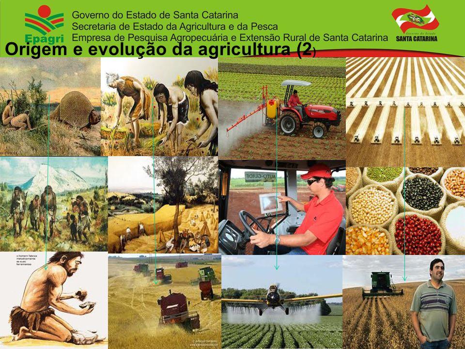 Origem e evolução da agricultura (2 )
