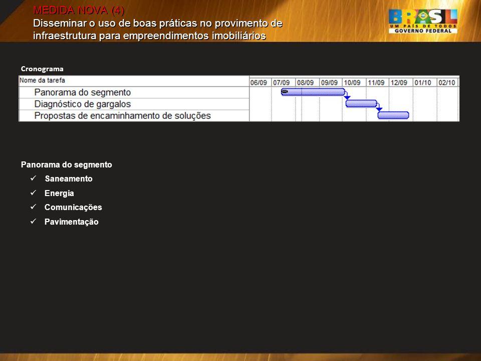 MEDIDA NOVA (4) Disseminar o uso de boas práticas no provimento de infraestrutura para empreendimentos imobiliários Panorama do segmento Saneamento Energia Comunicações Pavimentação Cronograma