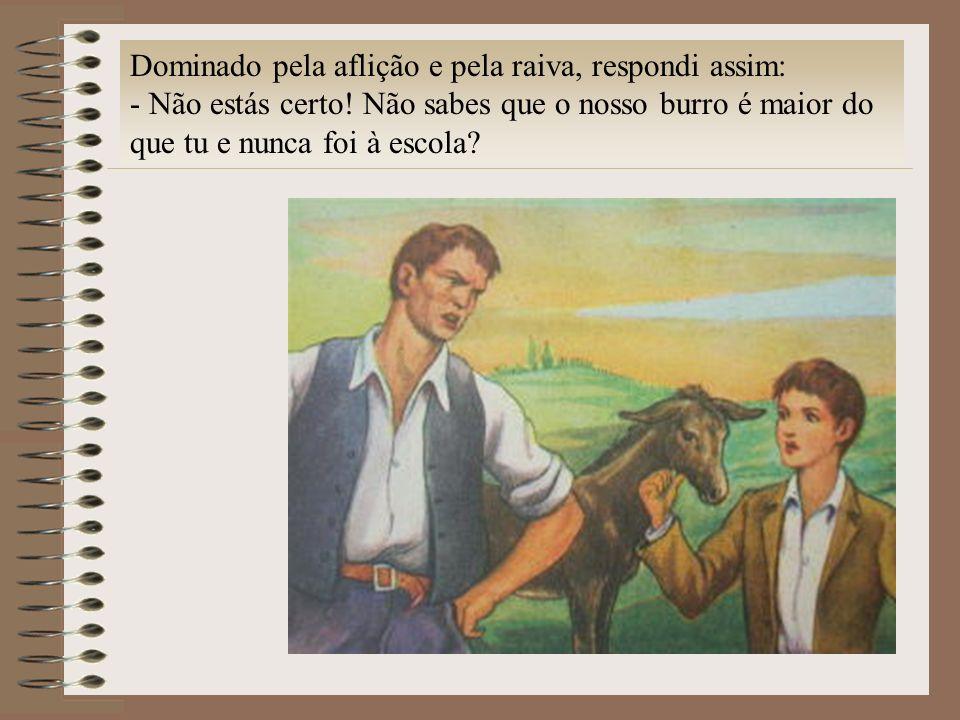Dominado pela aflição e pela raiva, respondi assim: - Não estás certo! Não sabes que o nosso burro é maior do que tu e nunca foi à escola?