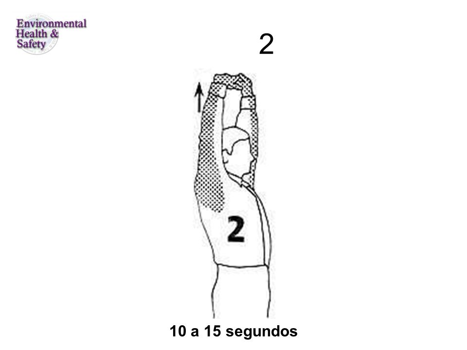 2 10 a 15 segundos