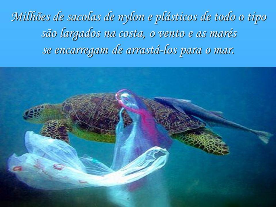 Milhões de sacolas de nylon e plásticos de todo o tipo são largados na costa, o vento e as marés se encarregam de arrastá-los para o mar.