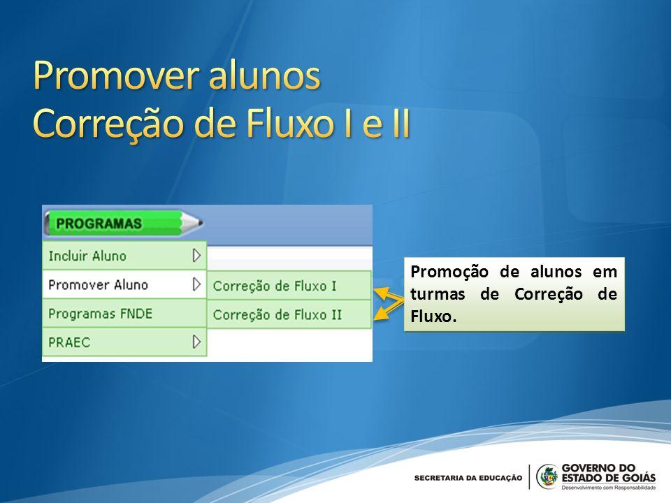 Promoção de alunos em turmas de Correção de Fluxo.