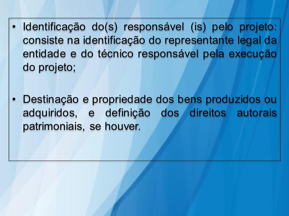 Identificação do(s) responsável (is) pelo projeto: consiste na identificação do representante legal da entidade e do técnico responsável pela execução
