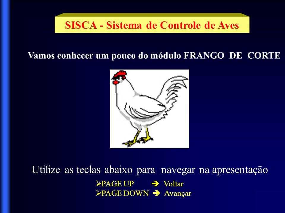 SISCA - Sistema de Controle de Aves Vamos conhecer um pouco do módulo FRANGO DE CORTE Utilize as teclas abaixo para navegar na apresentação PAGE UP Voltar PAGE DOWN Avançar