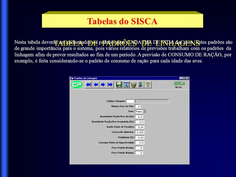 Tabelas do SISCA Navega entre registros Exibe conteúdo da tabela Apaga registros Sai da Aplicação Confirma a operação Clicando com o mouse nestes botões, você terá acesso a todos os registros existentes na tabela.