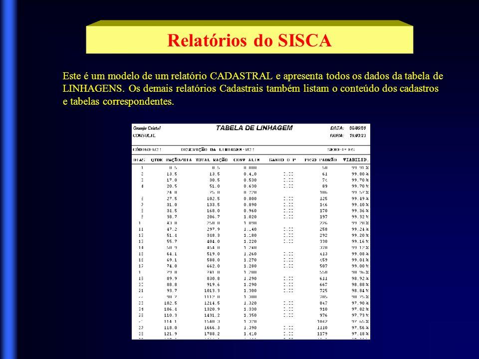 O SISCA tem diversos relatórios disponíveis para você.
