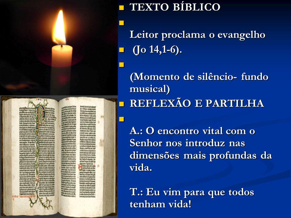 TEXTO BÍBLICO Leitor proclama o evangelho (Jo 14,1-6). (Momento de silêncio- fundo musical) REFLEXÃO E PARTILHA A.: O encontro vital com o Senhor nos