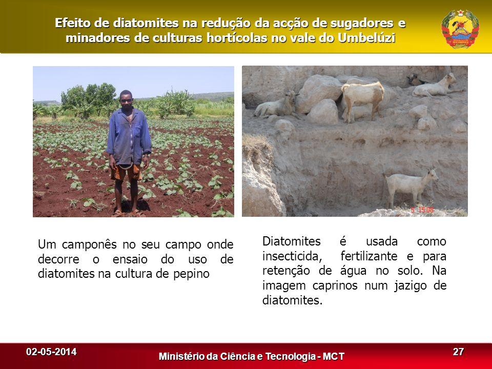 02-05-2014 Ministério da Ciência e Tecnologia - MCT 27 Ministério da Ciência e Tecnologia - MCT Efeito de diatomites na redução da acção de sugadores