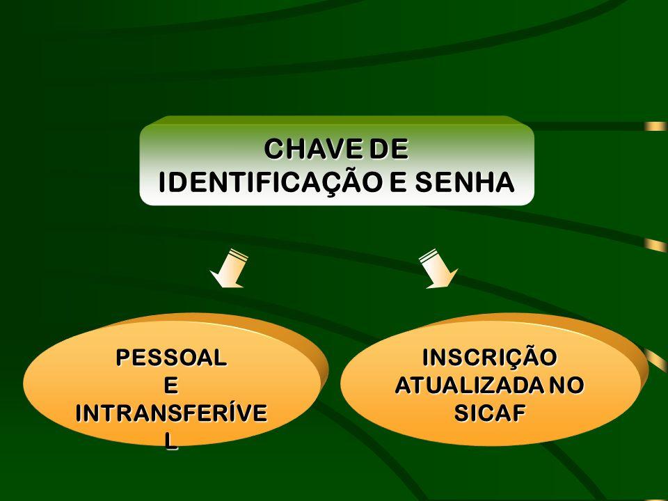 PESSOAL E INTRANSFERÍVE L CHAVE DE IDENTIFICAÇÃO E SENHA INSCRIÇÃO ATUALIZADA NO SICAF