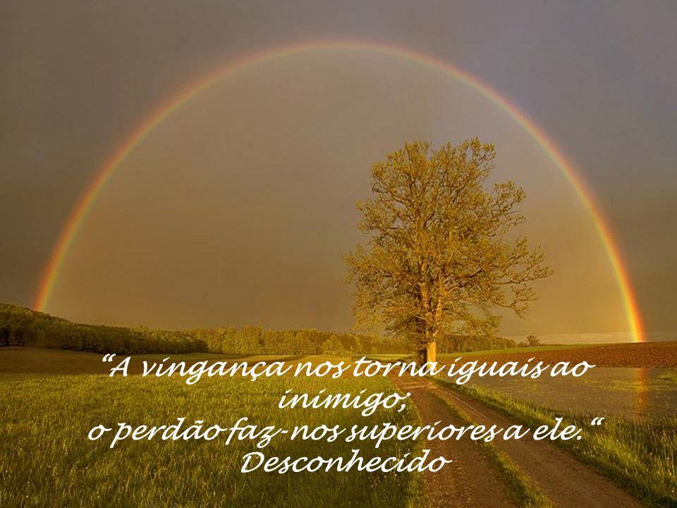 A vingança nos torna iguais ao inimigo; o perdão faz-nos superiores a ele. Desconhecido