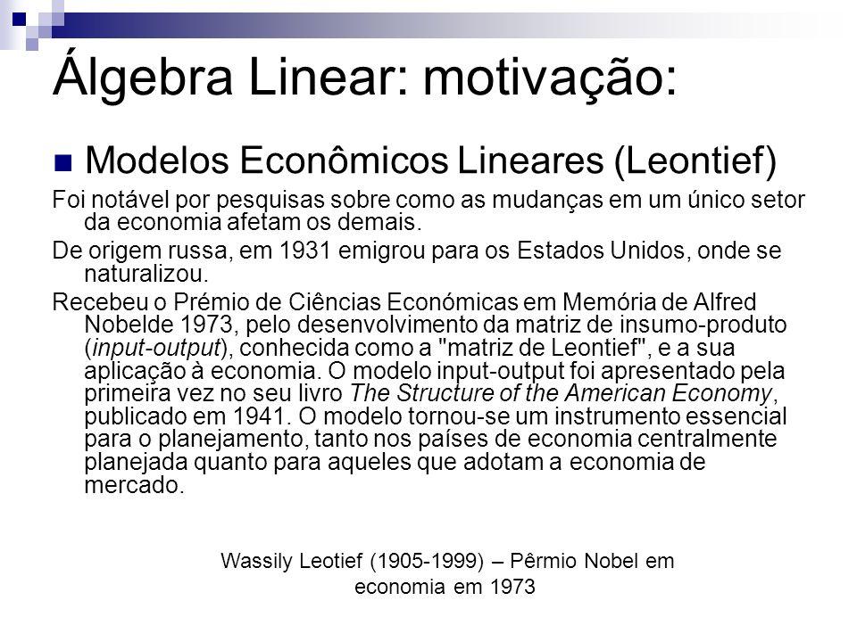 Álgebra Linear: motivação: Modelos Econômicos Lineares (Leontief) Wassily Leotief (1905-1999) – Pêrmio Nobel em economia em 1973 Foi notável por pesquisas sobre como as mudanças em um único setor da economia afetam os demais.