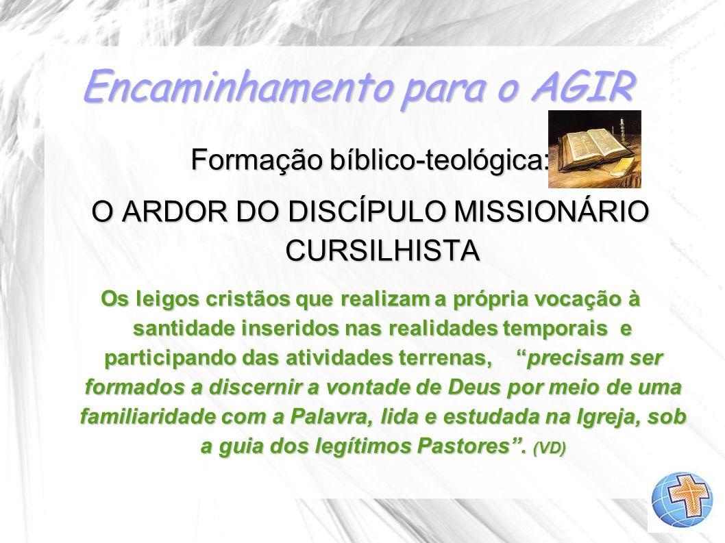 Encaminhamento para o AGIR Formação bíblico-teológica: O ARDOR DO DISCÍPULO MISSIONÁRIO CURSILHISTA Os leigos cristãos que realizam a própria vocação
