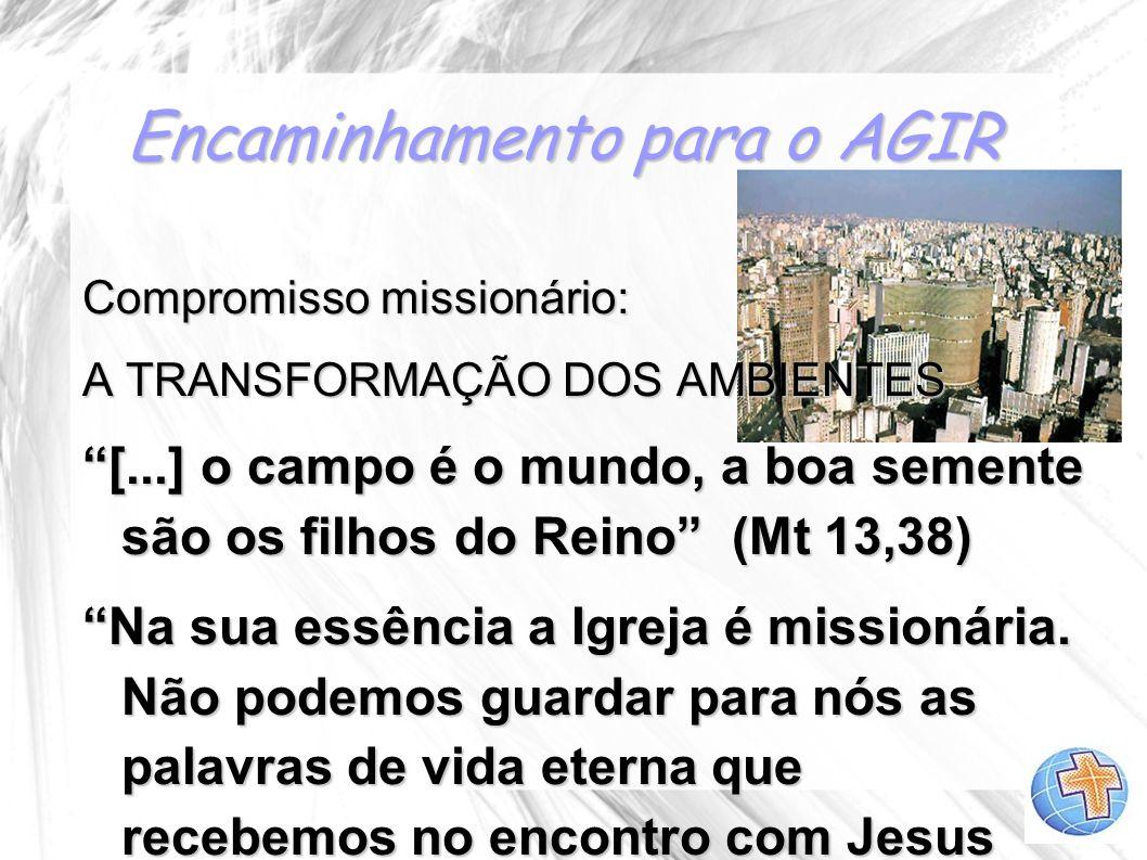 Encaminhamento para o AGIR Compromisso missionário: A TRANSFORMAÇÃO DOS AMBIENTES [...] o campo é o mundo, a boa semente são os filhos do Reino (Mt 13