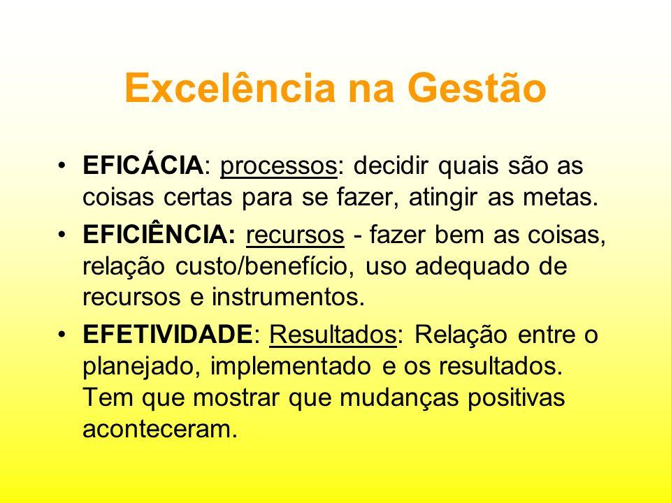 Terceiro Setor Competências - Capacitação Excelência na Gestão Resultados, credibilidade e visibilidade Auto-sustentabilidade