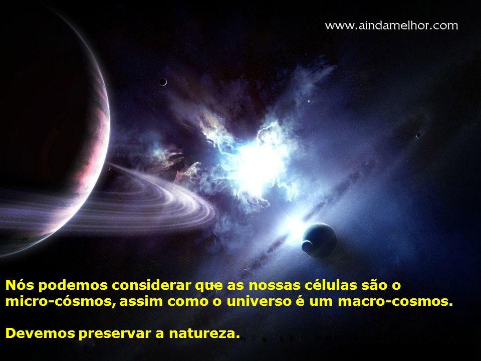 Nós podemos considerar que as nossas células são o micro-cósmos, assim como o universo é um macro-cosmos. Devemos preservar a natureza.