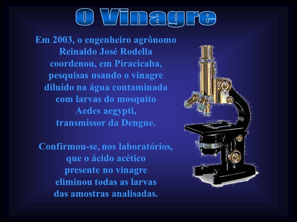 Revisão dos Textos e Formatação: JaneGuerr@ Reportagem sobre a pesquisa do Vinagre: Rogério Verzignasse, Correio Popular, em 15/03/06.