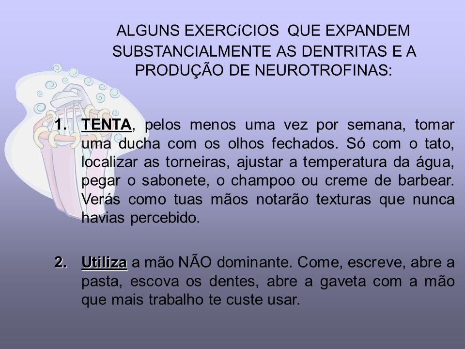 AS ATIVIDADES ROTINEIRAS SÃO INCONSCIENTES automaticamente Fazem com que e cérebro funcione automaticamente e requeira um mínimo de energia.